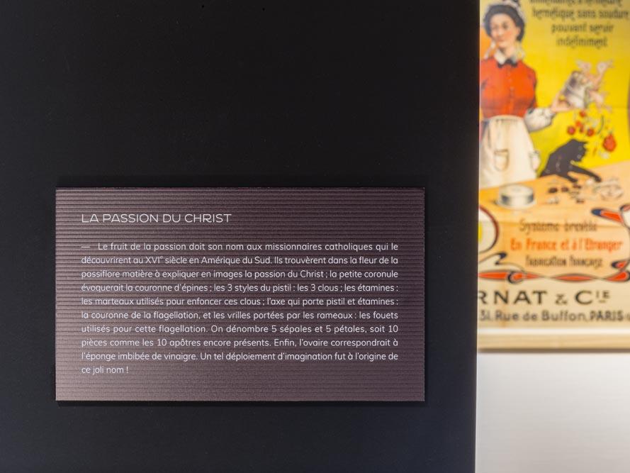 exposition_a_la_table_du_patrimoine_scenographie_graphisme_vincent_boutin (12)